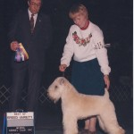 Am.Can.CH. Hollywood's Just In Case  #3 Wheaten in Canada 1995